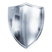 stock-photo-58845476-silver-shield