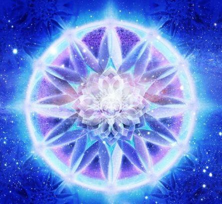 aa500c252cd436b0548205271f11ea6f--jellyfish-fractals