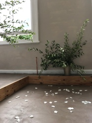 庭のオリーブの木を二本切って、白い薔薇の花弁とともに、室内に儀式の場を設けました。